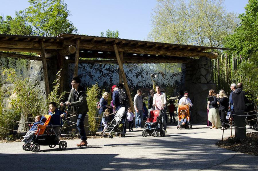 Woodland Park Zoo Banyan Wilds Exhibit